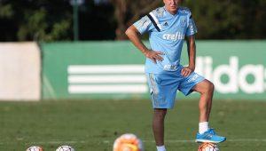 Cesar Greco/Ag. Palmeiras/Divuglação