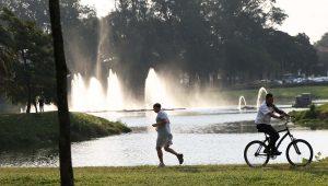 Parques municipais e estaduais reabrem em SP