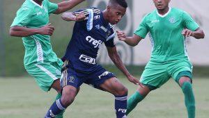 Divulgação/César Greco/Ag. Palmeiras