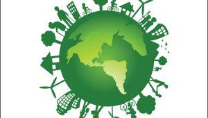NeoFeed: Razões que farão de 2020 o ano da sustentabilidade