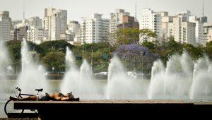 Cidade de SP reabre 70 parques municipais a partir do dia 13 de julho