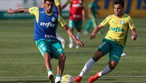 Cesar Grego/Palmeiras/Divulgação