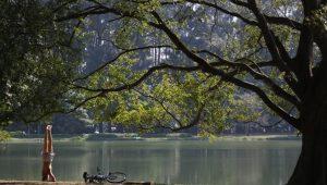 """Fernando Pieroni: """"O Brasil tem muito a avançar na exploração das áreas de parques naturais"""""""