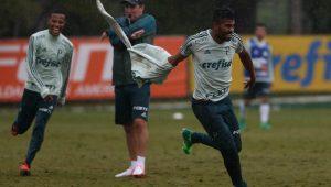 Reprodução-Twitter SE Palmeiras