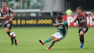 Divulgação / Cesar Greco / Ag Palmeiras