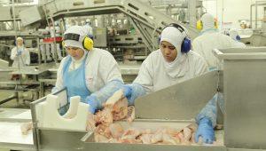 Brasil promete questionar medidas contra exportação de carne