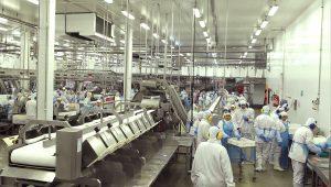Ninguém sai ileso de uma crise como essa, diz presidente da Minerva Foods
