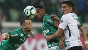 César Grego / Divulgação / Agência Palmeiras