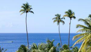 Sugar Beach Residences/Creative Commons