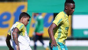 Cesar Greco / Divulgação / Agência Palmeiras