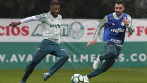 César Greco / Agência Palmeiras