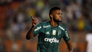 Futebol Campeonato Brasileiro Palmeiras Ponte Preta Borja