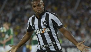 Futebol Campeonato Brasileiro Botafogo Chapecoense