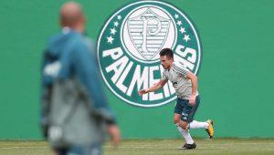 Futebol Campeonato Brasileiro Palmeiras Willian
