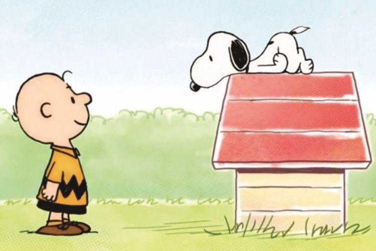 Snoopy E Charlie Brown 10 Curiosidades Do Quadrinho Que Faz 67