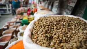 Brasil pode se tornar maior produtor mundial de alimentos até 2027