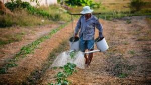 Trabalhador do campo, camponês, irrigação, agronegócio, agricultura