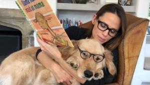 Jennifer Garner Dog