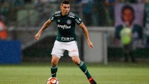 Moisés, Palmeiras