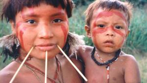 TRF-1 determina que governo retire garimpeiros da Terra Yanomami em Roraima
