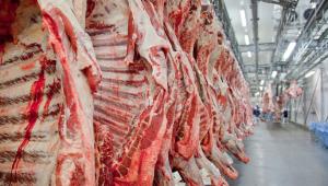 Para retomar as exportações de carne in natura para os Estados Unidos, frigoríficos de bovinos e suínos de seis estados brasileiros -- São Paulo, Minas Gerais, Goiás, Rio Grande do Sul, Santa Catarina e Mato Grosso do Sul -- começam a receber na próxima segunda-feira, dia 10