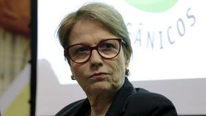 Tereza Cristina: 'Não há risco de desabastecimento caso Brasil tenha 2ª onda da Covid-19'