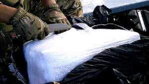 Mais de uma tonelada de cocaína é apreendida pela PF em SP