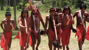 Covid-19: Com vetos, Bolsonaro sanciona lei para atendimento a indígenas e quilombolas