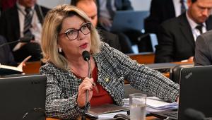 Aprovação da prisão após 2ª instância só sai se houver cobrança da população, diz senadora