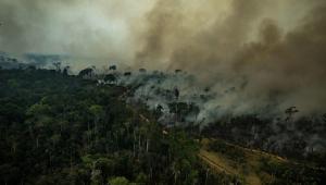 Mourão quer entregar minuta do Conselho da Amazônia a Bolsonaro essa semana