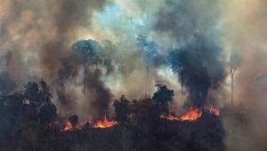 Decreto suspende por 120 dias queima controlada na Amazônia e no Pantanal