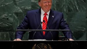 Certos cérebros do governo brasileiro param quando veem uma foto de Donald Trump