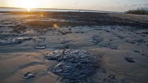 Vazamento de óleo ocorreu a pelo menos 600 km da costa