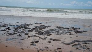 MPF pede reunião com comitê para tratar sobre manchas de óleo e situação de pescadores