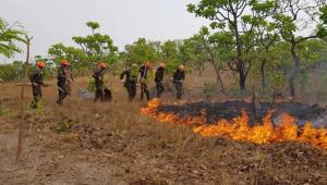 Incêndio volta atingir Pantanal