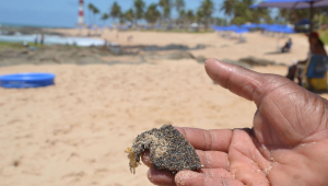 Novas manchas de óleo aparecem no Delta do Parnaíba, litoral do Piauí