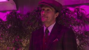 Império de maconha é alvo de disputa no trailer de 'Magnatas do Crime'; assista