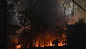 JP Descomplica: Entenda os incêndios que estão acontecendo na Austrália