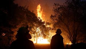Queda de avião que combatia incêndio florestal mata três na Austrália