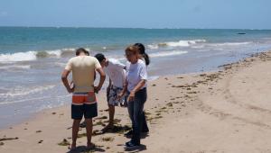 Óleo atinge região da Reserva Biológica de Comboios, no Espírito Santo