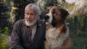 Harrison Ford embarca em aventura com fiel companheiro em novo filme; veja o trailer