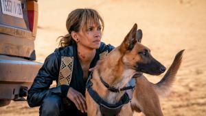 Halle Berry sofre acidente em gravação de novo filme