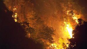 Incêndio Parque do Carmo