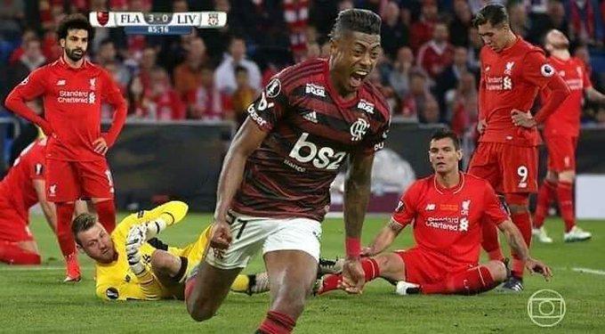 Torcedores Do Flamengo Enlouquecem Com Classificação Para