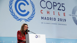 Presidente da COP25, ministra chilena diz não estar satisfeita com resultado