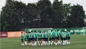 Palmeiras deve ter Edu Dracena e Carlos Eduardo contra o Goiás; veja provável escalação