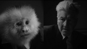 No dia de seu aniversário, David Lynch lança curta interrogando macaco