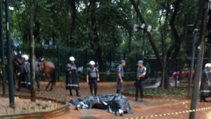 cavalo da pm morre na praça da república