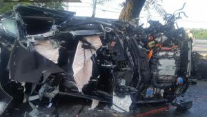 Motorista sobrevive após carro de luxo capotar e arrancar árvore e poste na zona sul de SP
