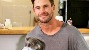 Chris Hemsworth dá colo para bebê coala em visita a ONG na Austrália